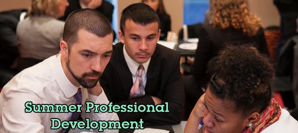 2014 Summer Professional Development