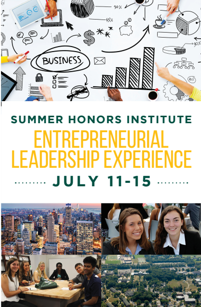 LIU SUMMER HONORS INSTITUTE